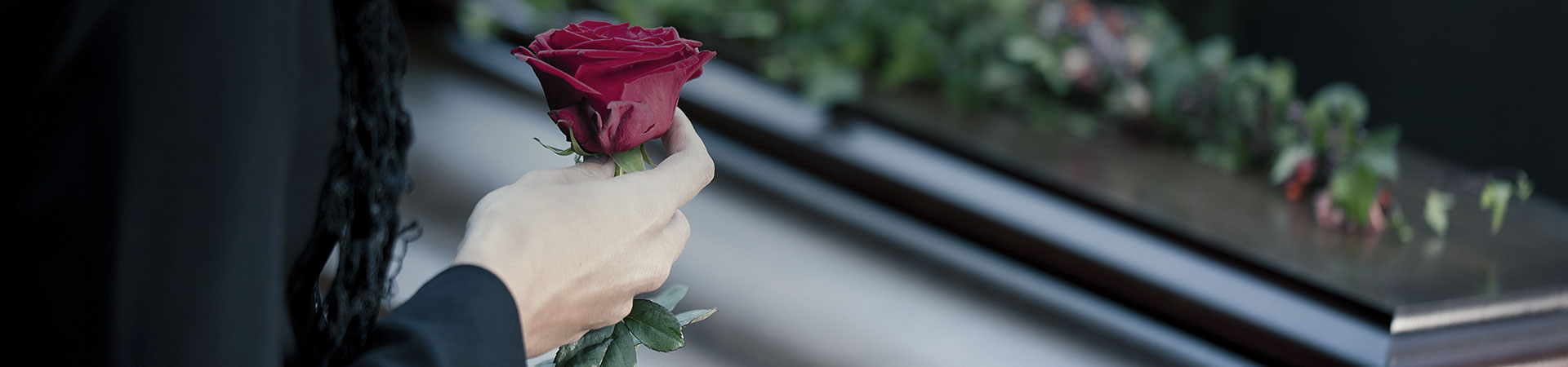 Porgere una rosa - Gesa Impresa Funeraria Internazionale